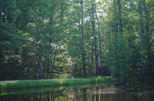 2014-spruce-lake